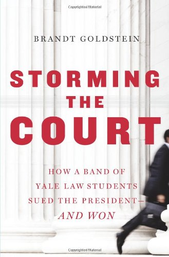 9780743230018: Storming the Court: How a Band of Yale Law Students Sued the President--and Won