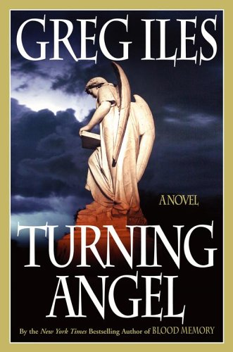 9780743234719: Turning Angel: A Novel