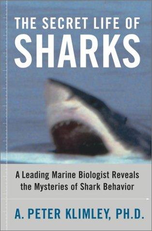 9780743241700: The Secret Life of Sharks: A Leading Marine Biologist Reveals the Mysteries of Shark Behavior