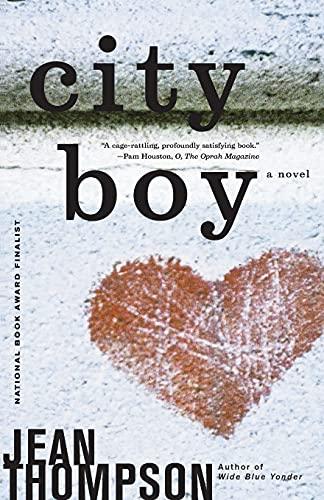 9780743242837: City Boy: A Novel