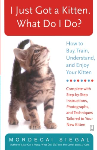 9780743245098: I Just Got A Kitten, What Do I Do?: How To Buy, Train, Understand, And Enjoy Your Kitten