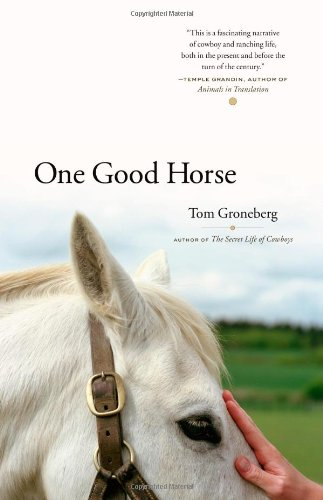 9780743265171: One Good Horse