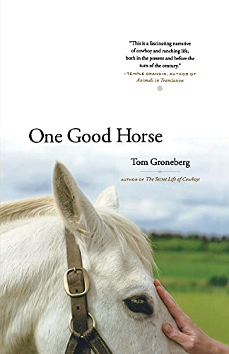 9780743265188: One Good Horse