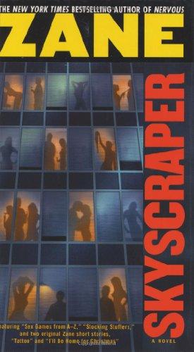 9780743457033: Skyscraper: A Novel