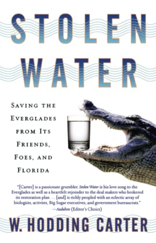 9780743474078: Stolen Water: Saving the Everglades from Its Friends, Foes, and Florida