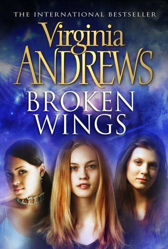 9780743484039: Broken Wings