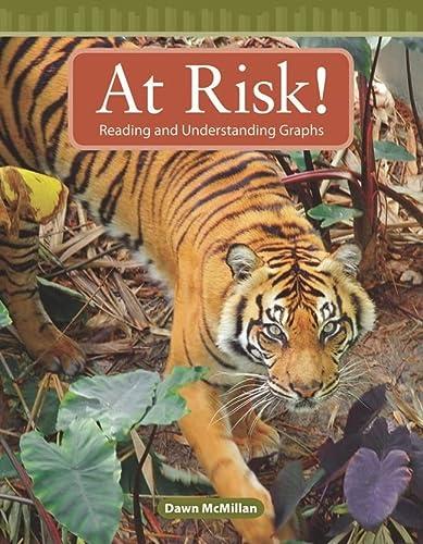 9780743908900: At Risk!: Level 3 (Mathematics Readers)