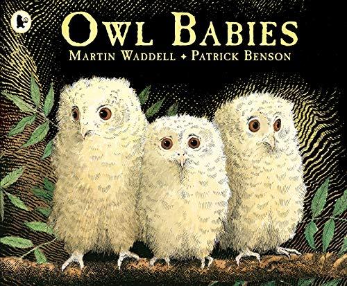 9780744531671: Owl Babies