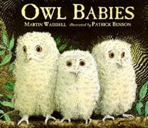 9780744549232: Owl Babies