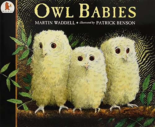 9780744563139: Owl Babies (Big Books)