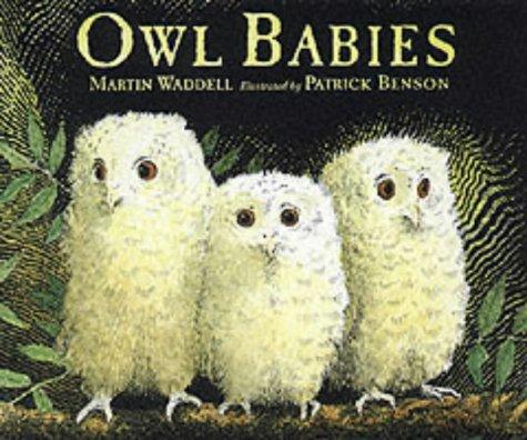 9780744592702: Owl Babies (Little Favourites)