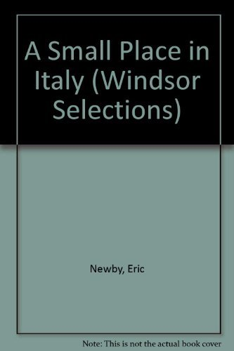 9780745178806: A Small Place in Italy (Windsor Selections)
