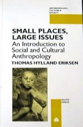 9780745309521: Small Places, Large Issues: An Introduction to Social and Cultural (Anthropology, Culture, and Society)