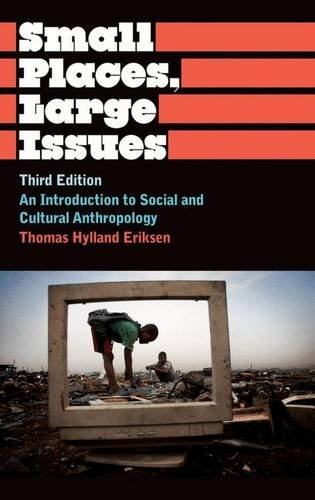 9780745330501: Small Places, Large Issues: An Introduction to Social and Cultural Anthropology, Third Edition (Anthropology, Culture and Society)