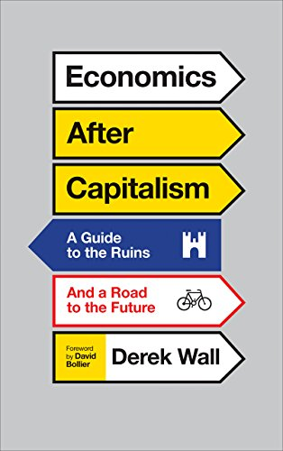 Economics After Capitalism: A Guide to the Ruins and a Road to the Future (Hardback): Derek Wall