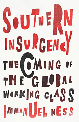 9780745335995: Southern Insurgency: The Coming of the Global Working Class
