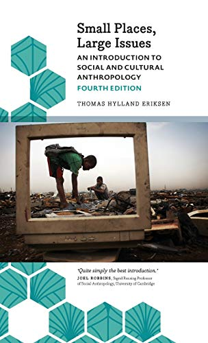 9780745336954: Small Places, Large Issues: An Introduction to Social and Cultural Anthropology (Anthropology, Culture and Society)