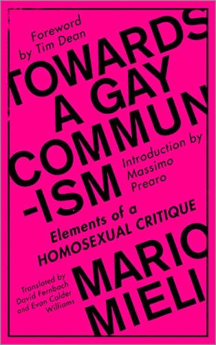 9780745399515: Towards a Gay Communism: Elements of a Homosexual Critique