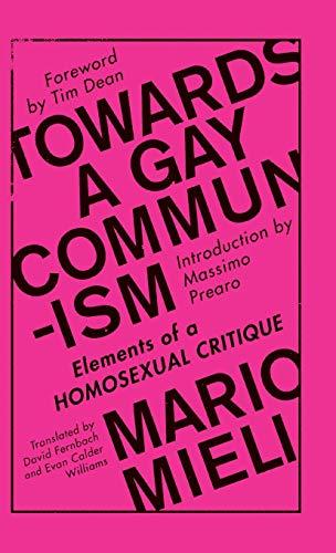 9780745399522: Towards a Gay Communism: Elements of a Homosexual Critique