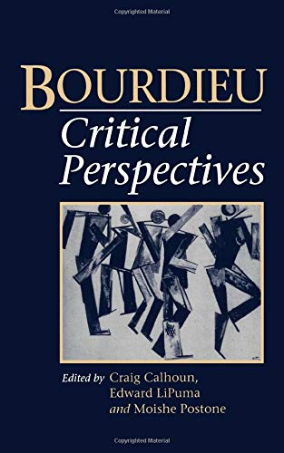 9780745611303: Bourdieu: Critical Perspectives