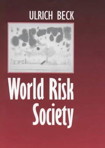 9780745622200: World Risk Society