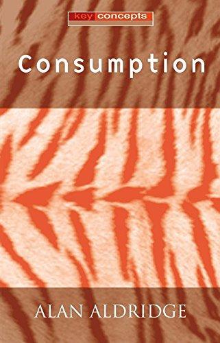 Consumption (Key Concepts) (9780745625294) by Alan Aldridge