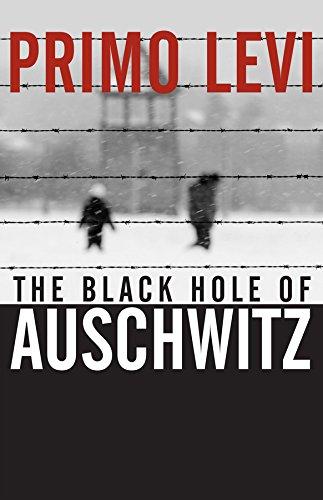 9780745632407: The Black Hole of Auschwitz