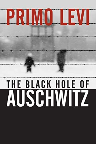 9780745632414: The Black Hole of Auschwitz