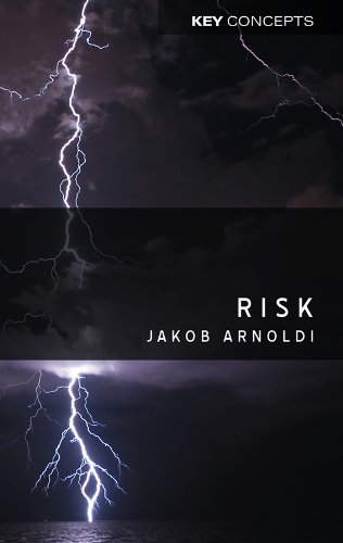 9780745640983: Risk (Key Concepts)