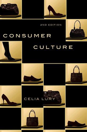9780745643298: Consumer Culture