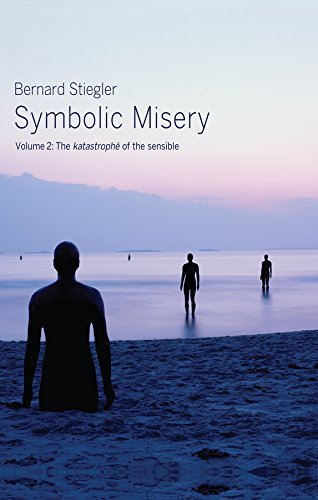 9780745652672: Symbolic Misery, Volume 2: The Catastrophe of the Sensible