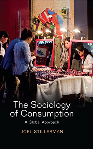 9780745661278: The Sociology of Consumption: A Global Approach