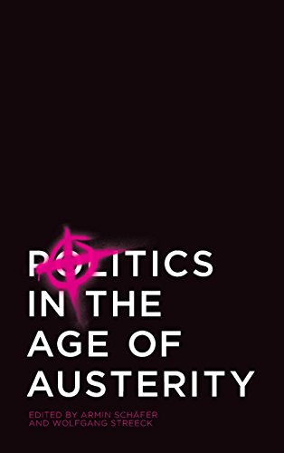 9780745661681: Politics in the Age of Austerity