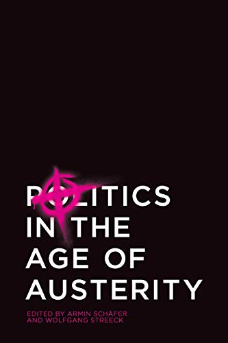 9780745661698: Politics in the Age of Austerity