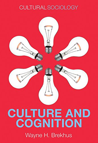 9780745671765: Culture and Cognition: Patterns in the Social Construction of Reality (Cultural Sociology)