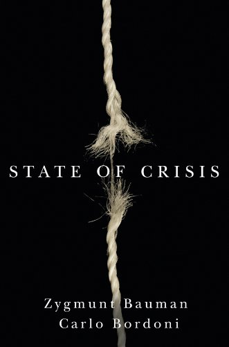 9780745680958: State of Crisis