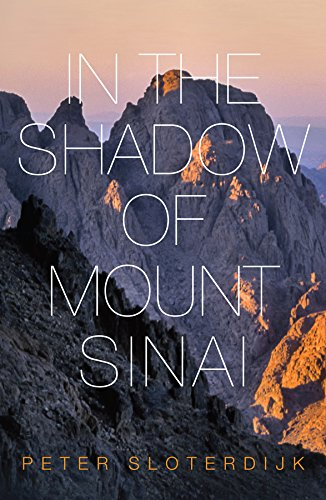9780745699240: In the Shadow of Mount Sinai