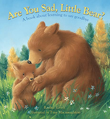 9780745961378: Are You Sad, Little Bear?: A Book About Learning to Say Goodbye
