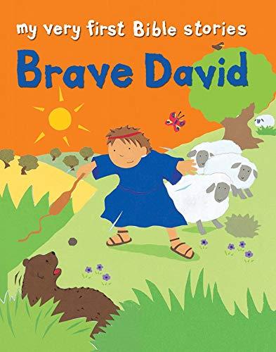 9780745963075: Brave David (My Very First)