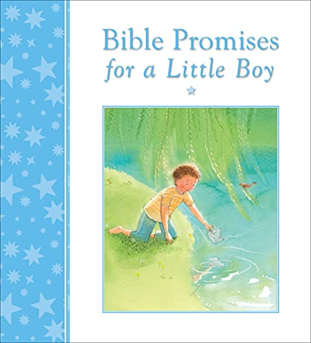 Bible Promises for a Little Boy: Joslin, Mary