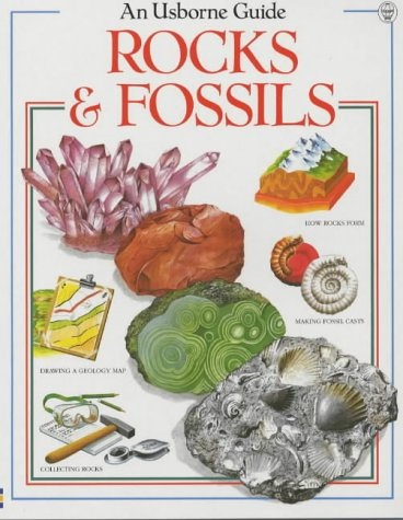 9780746019757: Rocks and Fossils (Hobby Guides (Usborne Paperback))