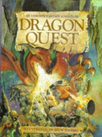 9780746023464: Dragon Quest (Usborne Fantasy Adventure)