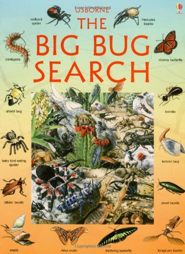 9780746027035: The Big Bug Search (Look/Puzzle/Learn Series) (Great Searches (EDC Paperback))