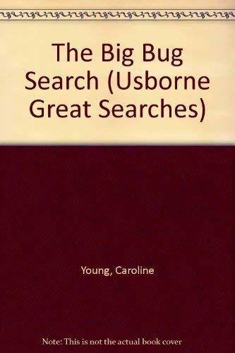 9780746027042: The Big Bug Search (Usborne Great Searches)
