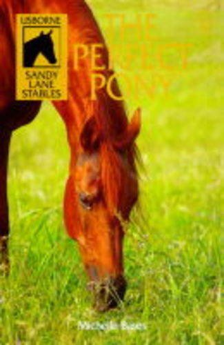 9780746033302: The Perfect Pony (Sandy Lane Stables, 8)
