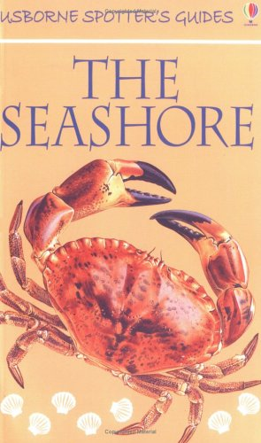 9780746040652: The Seashore (Usborne New Spotters' Guides)