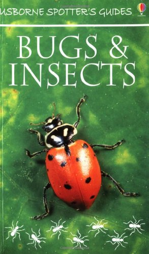 9780746040713: Bugs and Insects