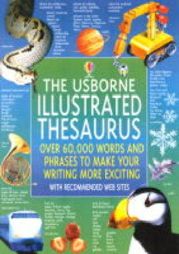 9780746046104: The Usborne Illustrated Thesaurus (Usborne Illustrated Dictionaries)