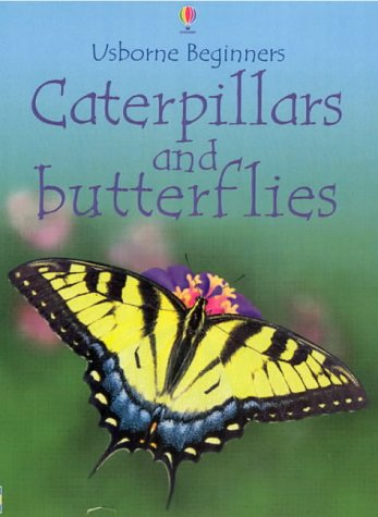 9780746047057: Caterpillars and Butterflies (Beginners)