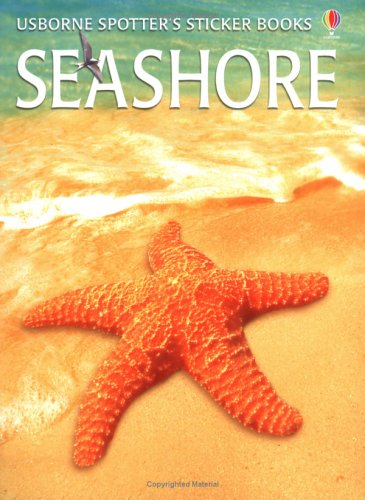 9780746047699: Seashore Sticker Book
